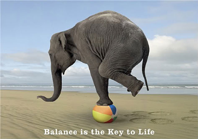Balance is the key to life
